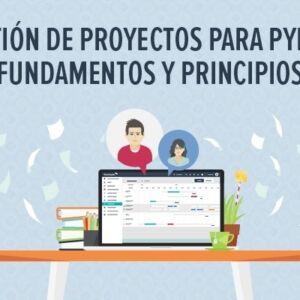 Gestio CC81n de proyectos para pymes fundamentos y principios